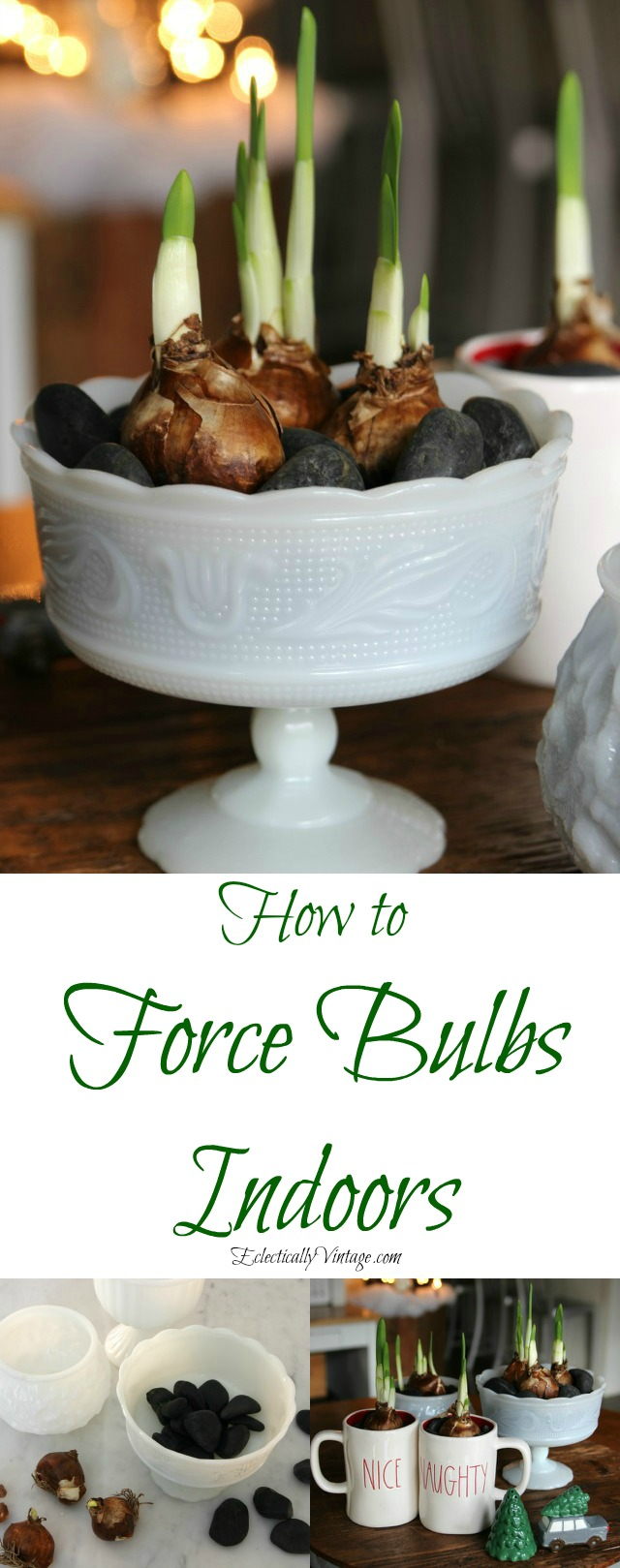 How to force bulbs indoors - perfect for Christmas and this centerpiece using different containers is gorgeous! kellyelko.com