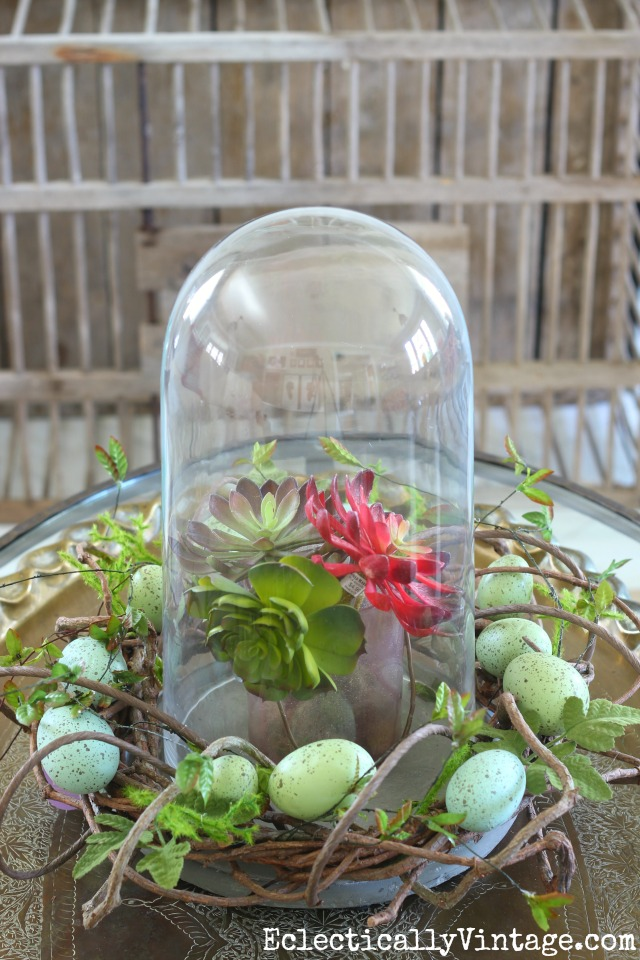 Spring cloche with an egg wreath and succulents kellyelko.com