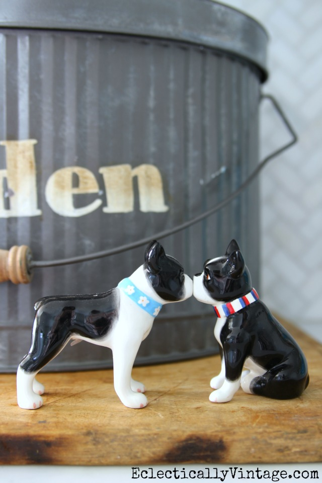 Kissing Boston Terrier salt and pepper shakers kellyelko.com