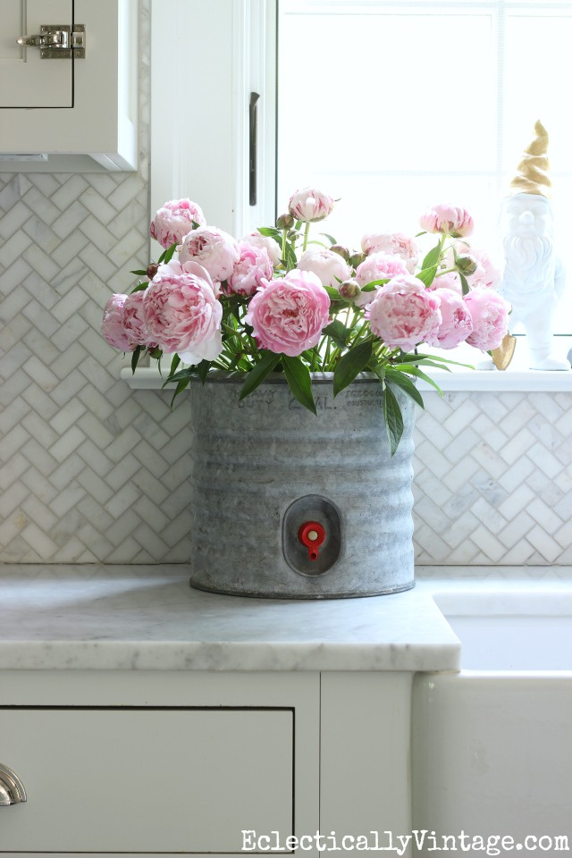 Learn when to cut peonies so you get a lasting indoor bouquet - love this one in a vintage galvanized cooler kellyelko.com