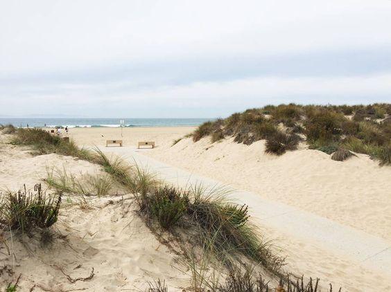 Beach dunes kellyelko.com