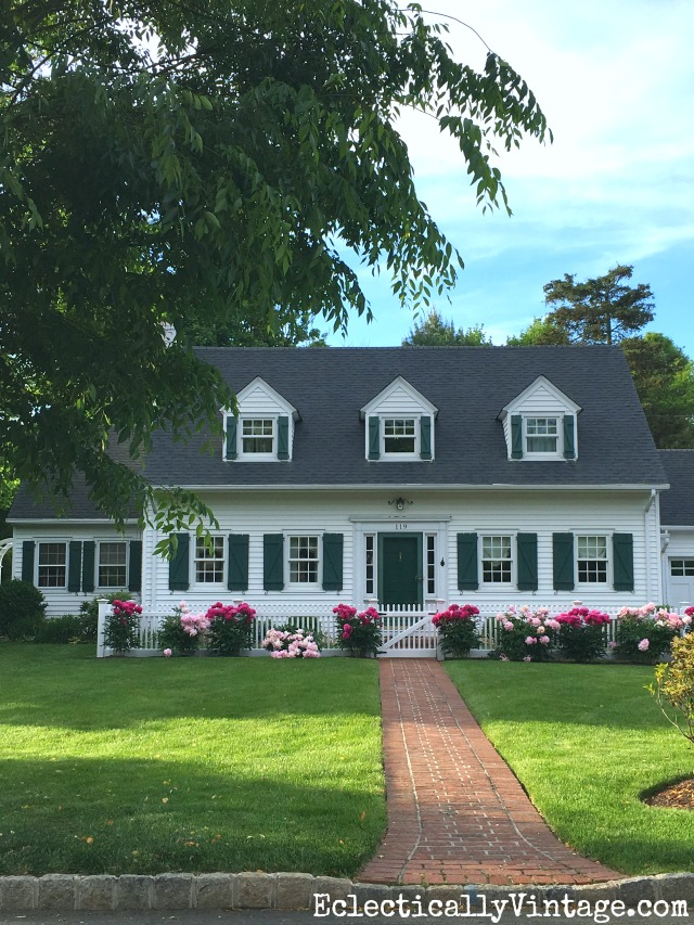 Love the row of peonies planted in front of this cape cod home kellyelko.com