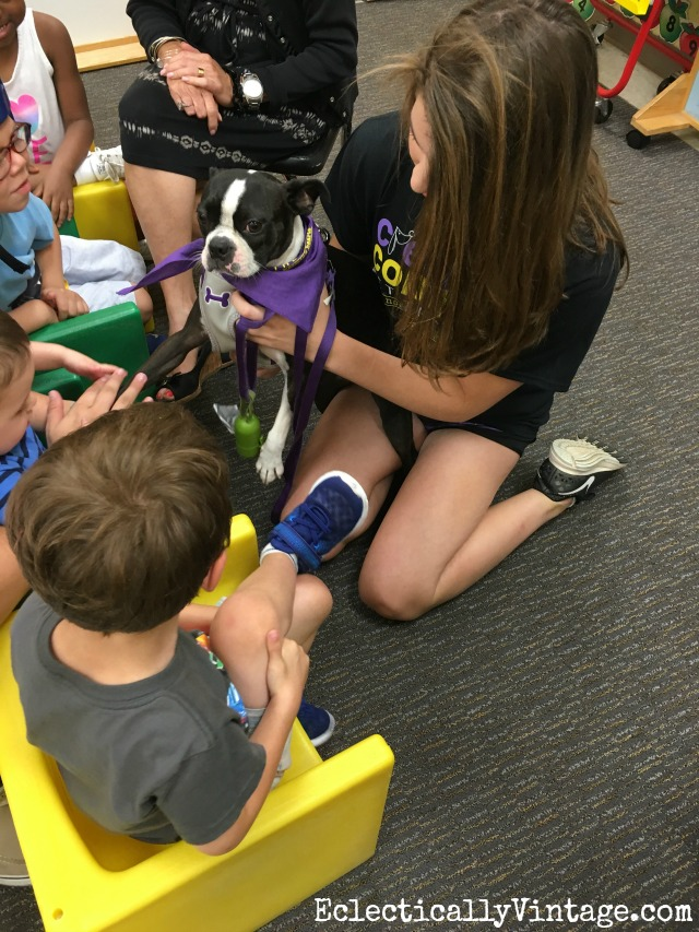 Pet therapy - such a rewarding experience kellyelko.com